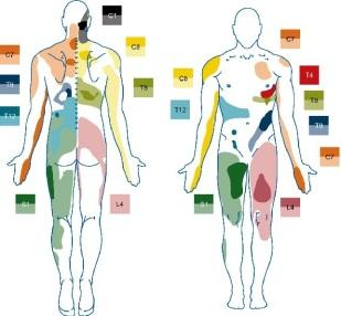 kiropraktiikka, kiropraktikko, fysioterapia, fysioterapeutti, jyvaskyla, jkl, aanekoski